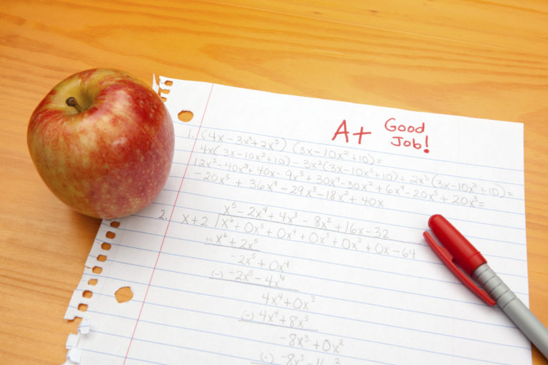 Understand Your necessities for the Essay Grading
