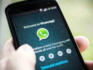 How to Send BSDK in Girls WhatsApp Group: Stay Updated Without Hassle